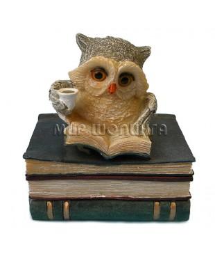 Сова на стопке книг, шкатулка 9 см.